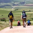 The documentary WALKING THE CAMINO plays the Naro Cinema on  Wed, Aug 20. Writer Michael Pearson will conduct a Q&A immediately following the film.