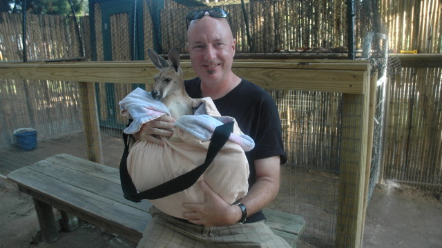 A close encounter with a baby kangaroo at Alabama Gulf Coast Zoo