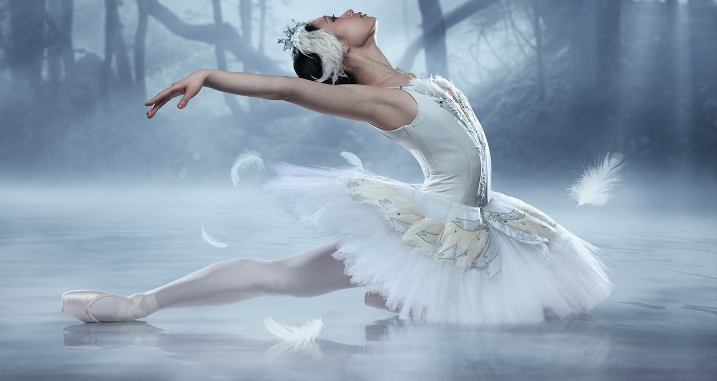Swan Lake Soars in from Canada