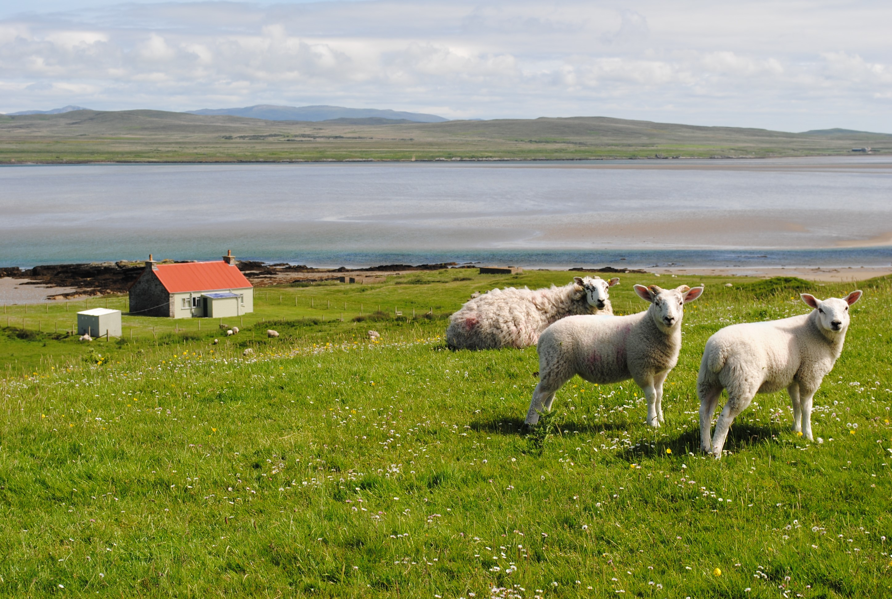 TRAVEL: Isle of Islay, Queen of the Hebrides, Scotland